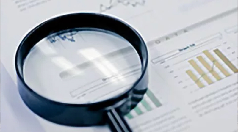 Shareholder Return